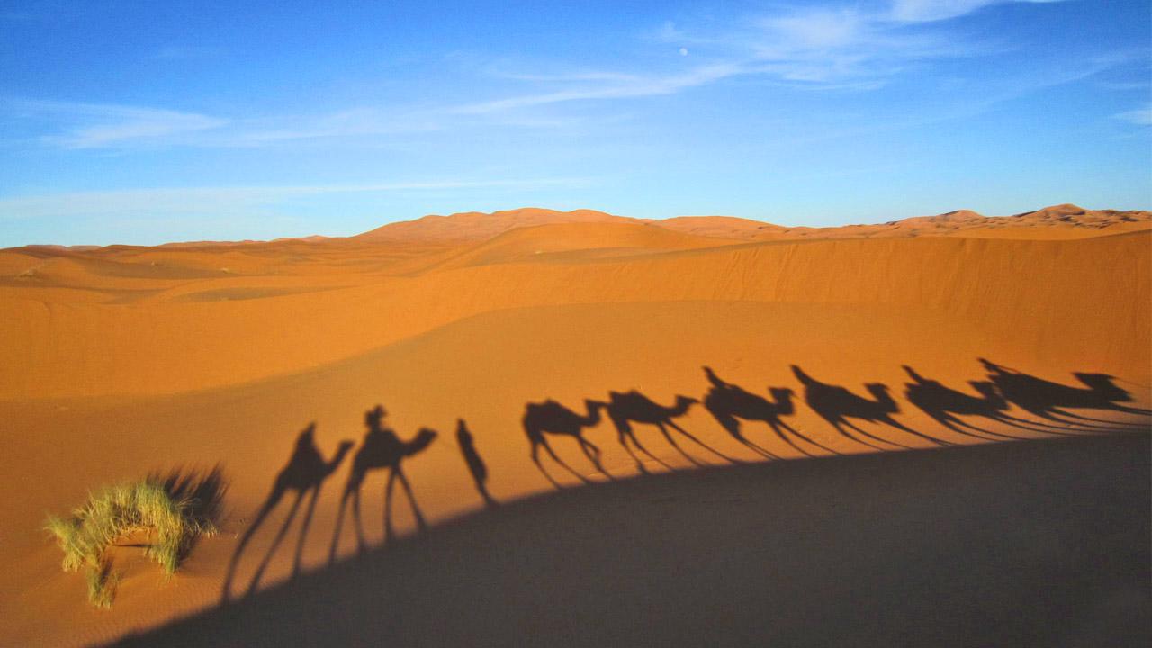 Reisende Wollen Echte Gastfreundschaft Erleben